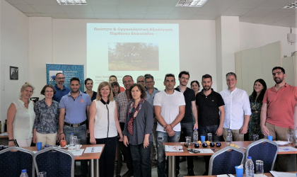 Participants and leaders at the olive oil tasting seminar in Rethymno
