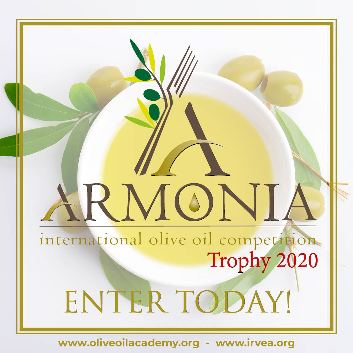 a banner with a white bowl of olive oil surrounded by olive leaves, with the words