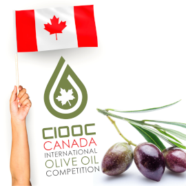 An arm and hand holding a Canadian flag above the CIOOC logo, with these words below it: Canada International Olive Oil Competion. 3 black olives on a branch with a few leaves are at the right.