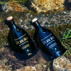 two black Pamako olive oil bottles with wooden stoppers lying next to rocks in the clear water of a little stream