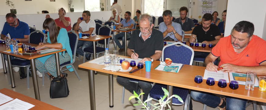 Participants at the olive oil tasting seminar in Rethymno seated at tables, tasting olive oil samples and making notes