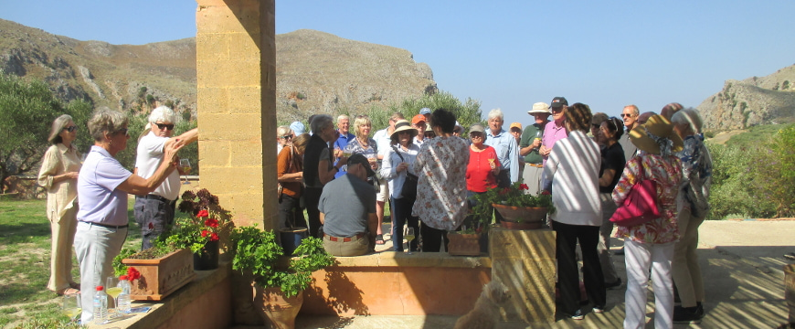 visitors listening to information about olive oil at Biolea, with olive groves and hills in the background