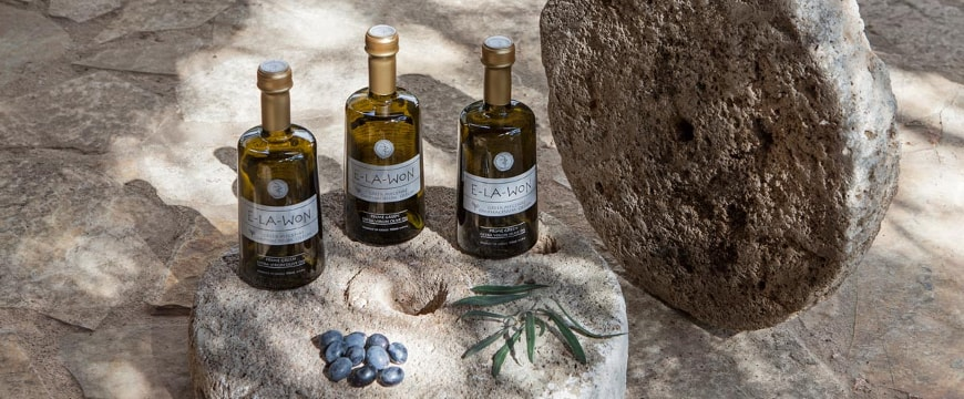 Elawon olive oil bottles by a big old millstone, with some olives