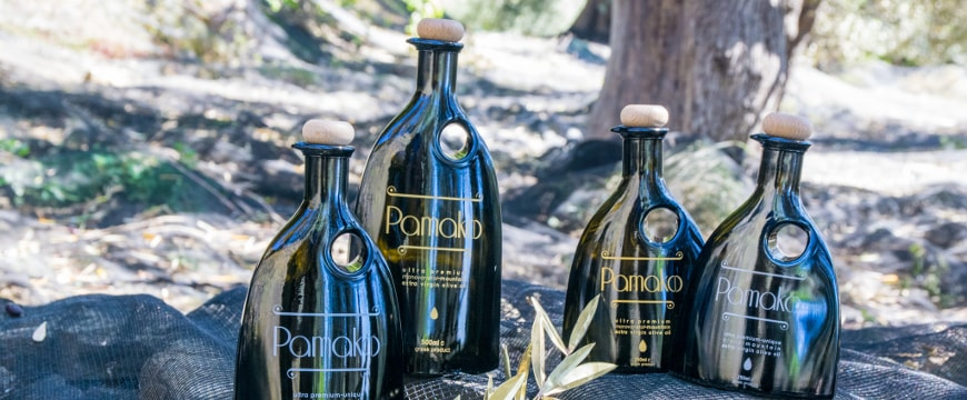 Four Pamako olive oil bottles in a forest