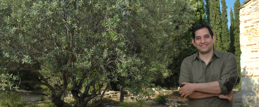 Stratis Camatsos standing by an olive tree