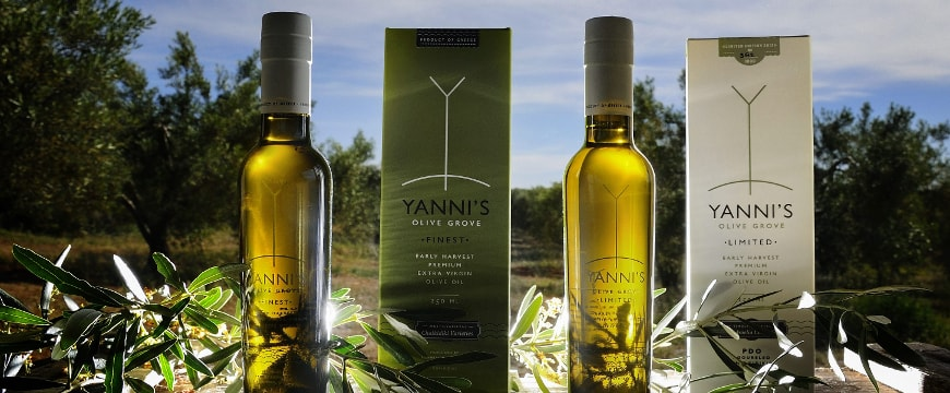 Yanni's glass bottles and boxes backlit among olive branches in an olive grove