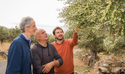 Fritz and Felix Blaeuel inspecting olive trees with a producer just before harvest