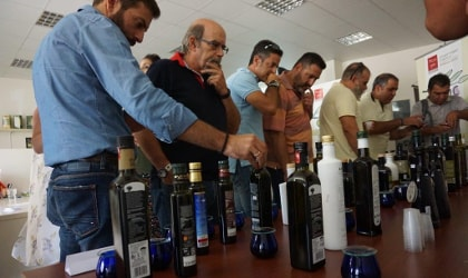 Seminar participants looking at bottles of olive oil