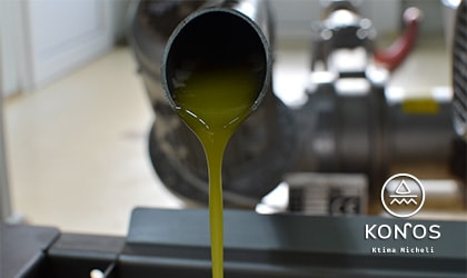 olive oil flowing from a stainless steel pipe in the mill