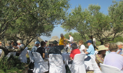 guests sitting at tables for a catered lunch beneath olive trees at Biolea