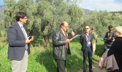 An agronomist talking to a group next to an olive grove near Delphi