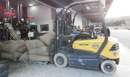 forklift moving bags of olives into olive mill