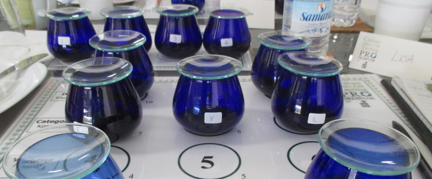 blue olive oil tasting glasses at a tasting seminary in Crete