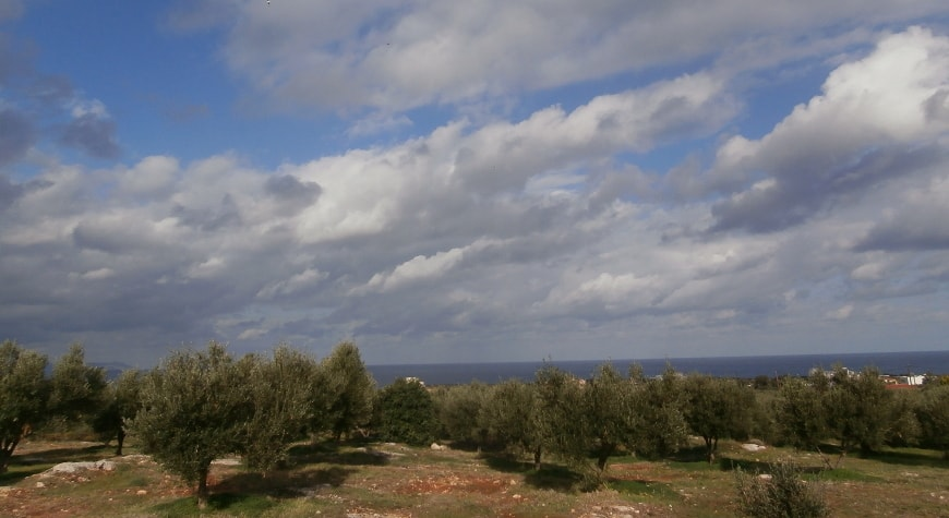 Dramatic white clouds in blue sky above olive groves in Crete