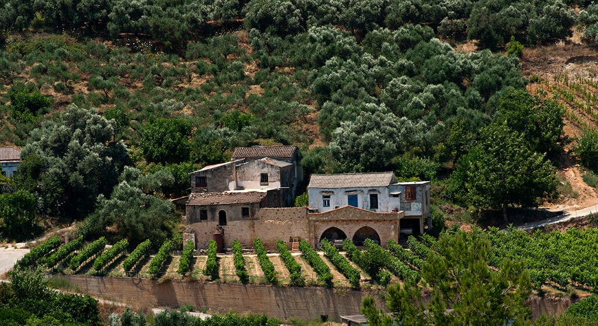 Anoskeli's vineyards and old buildings across the valley