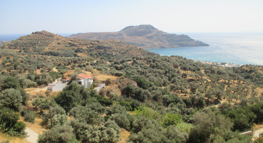 olive groves above Plakias, hills, sea, and sky