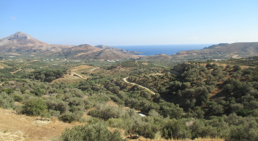 olive groves, hills, sea, and sky in south central Crete